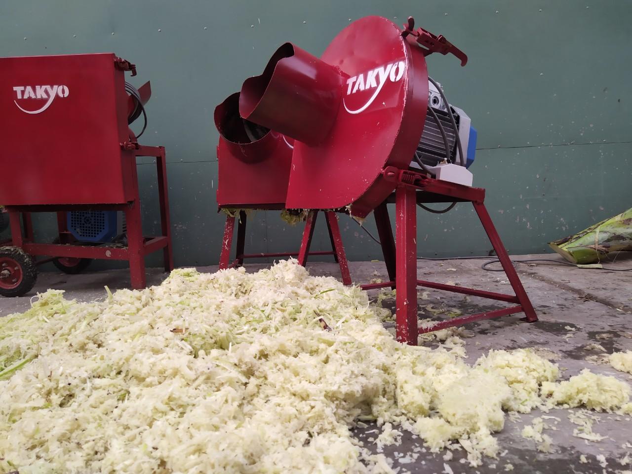 Công suất máy băm chuối