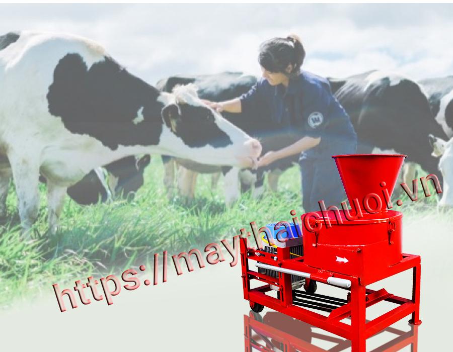 Máy băm thức ăn cho bò
