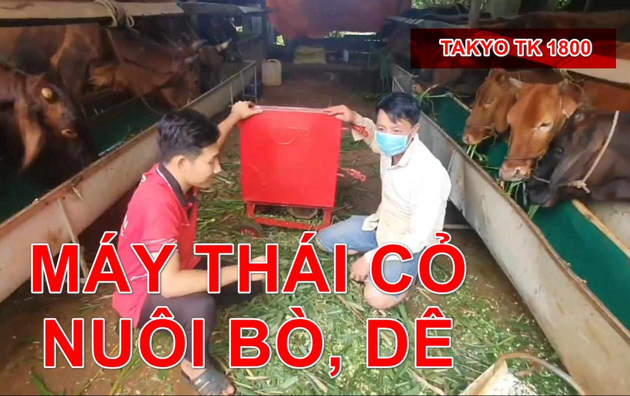 Ứng dụng máy băm cỏ, máy băm chuối nuôi dê bò