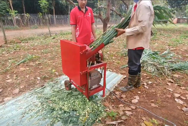 Công dụng của máy băm cỏ voi nuôi bò dê