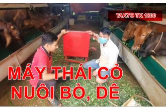 Máy Thái Chuối Takyo , Thái Cây Cỏ Voi Làm Thức Ăn Nuôi Dê, Bò