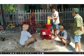 Máy băm chuối Vũng Tàu l Bán máy băm chuối, máy thái cỏ voi cho dê ở Huyện Long Điền Vũng Tàu